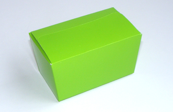 Green 250g sized Ballotin - Gift Carton Ideal for Spring-Summer occasions