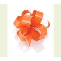 Standard 19mm ribbons