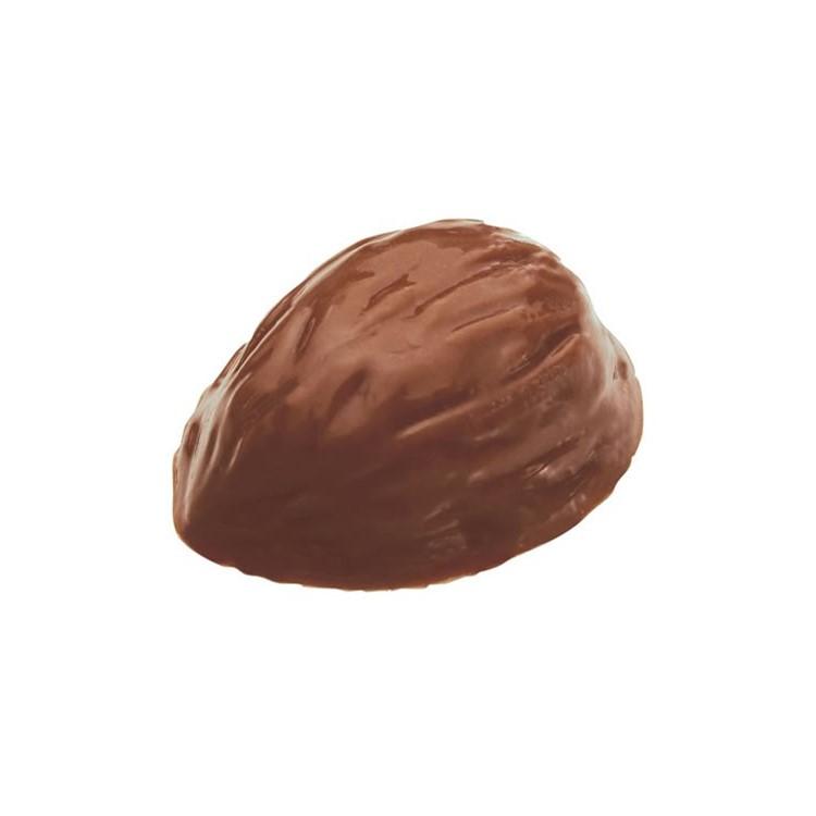 Milk chocolate cups | walnut halves shape | box of 756